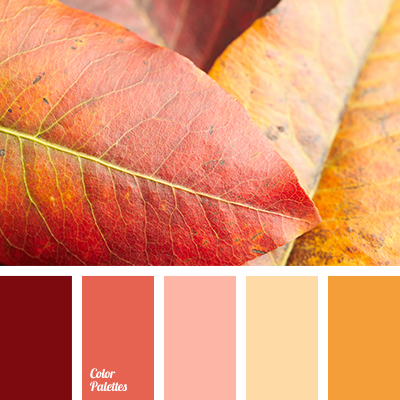colors of autumn 2017
