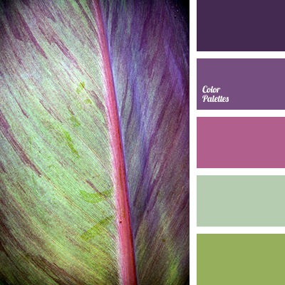 Color Palette 3493 Color Palette Ideas