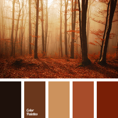 Color Palette 3497