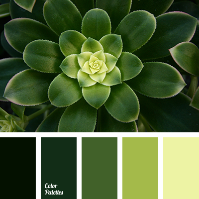 Color Palette 3539 Color Palette Ideas