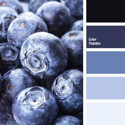 Color Palette 3589