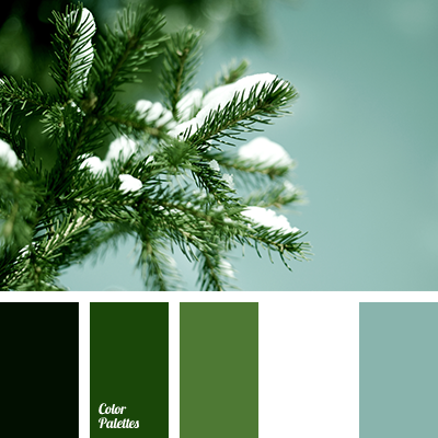Color Palette 3645