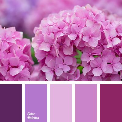 Color Palette 3769