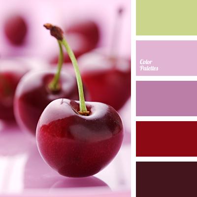 Wine Color Color Palette Ideas