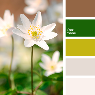 Pale Green Color Palette Ideas