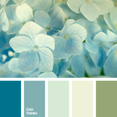 Baby Blue Color Palette Ideas