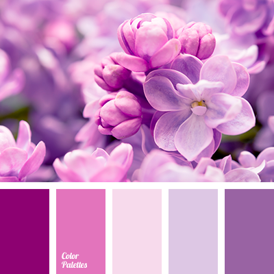 Pink And Violet Color Palette Ideas