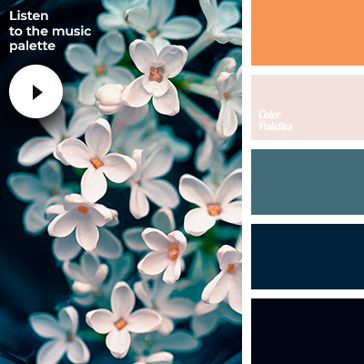 http://colorpalettes.net/wp-content/uploads/2019/01/ambient_music_palette_3901.png