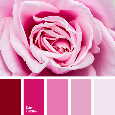 Image result for family of pink colors