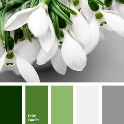 Dark Grey Color Palette Ideas