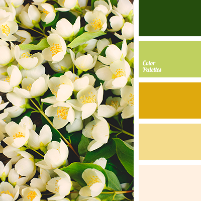 Lime Green Color Palette Ideas