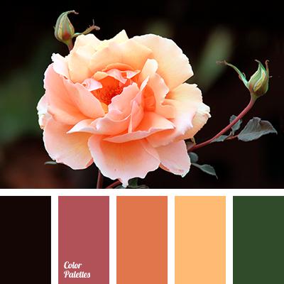 Yellow-orange color