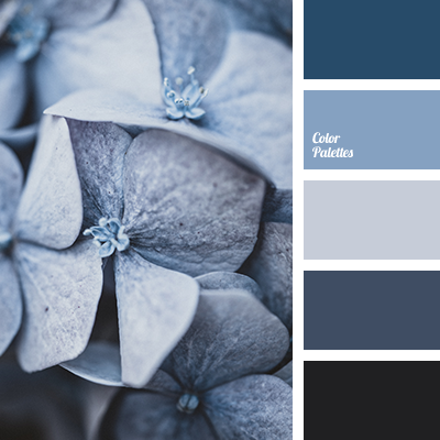Shades of blue-gray
