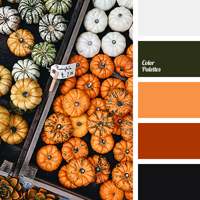 Pumpkin color