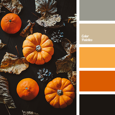 Shades of pumpkin
