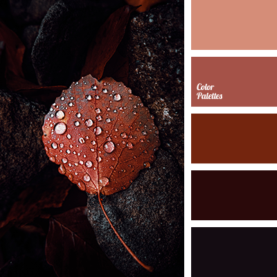 Shades of red-brown