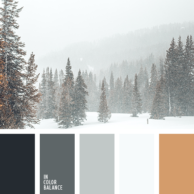 Palette for winter